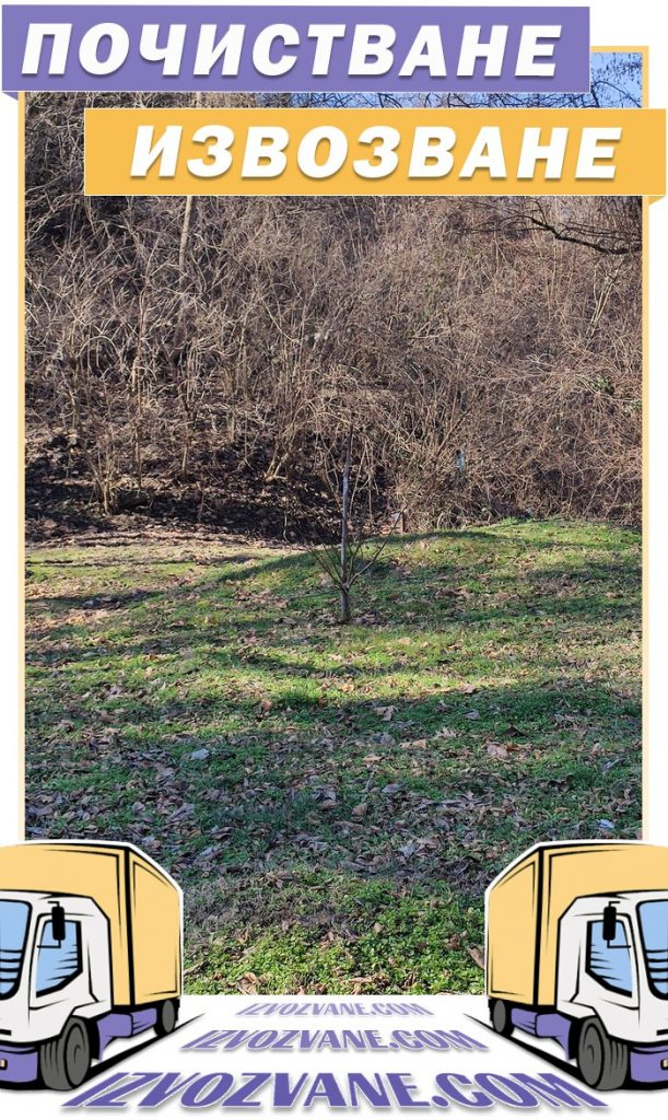 Косене на трева, рязане на храсти и разчистване на двор