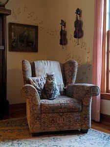 Извозване на стари мебели 1 -резултат